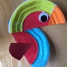 A Rainbow bird